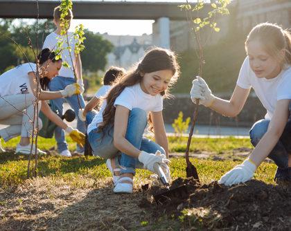 Building a Robust Volunteer Force